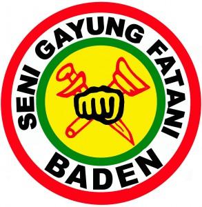 Logo Baden Kopie
